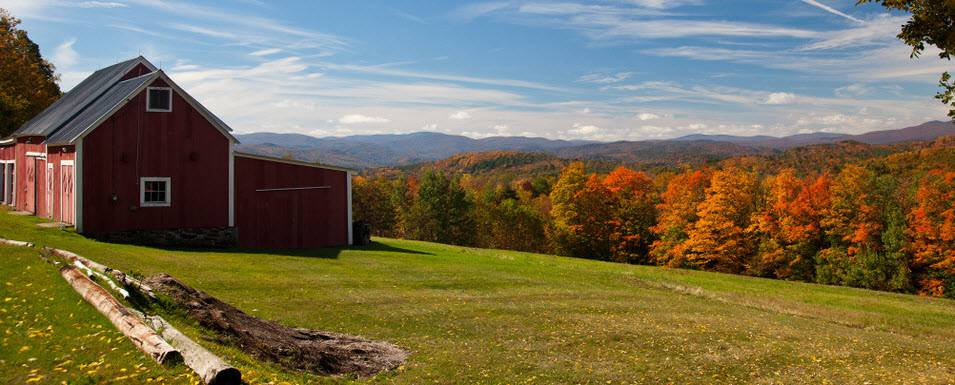 My VT Home